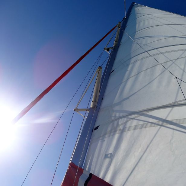 Reef Daytripper Sail